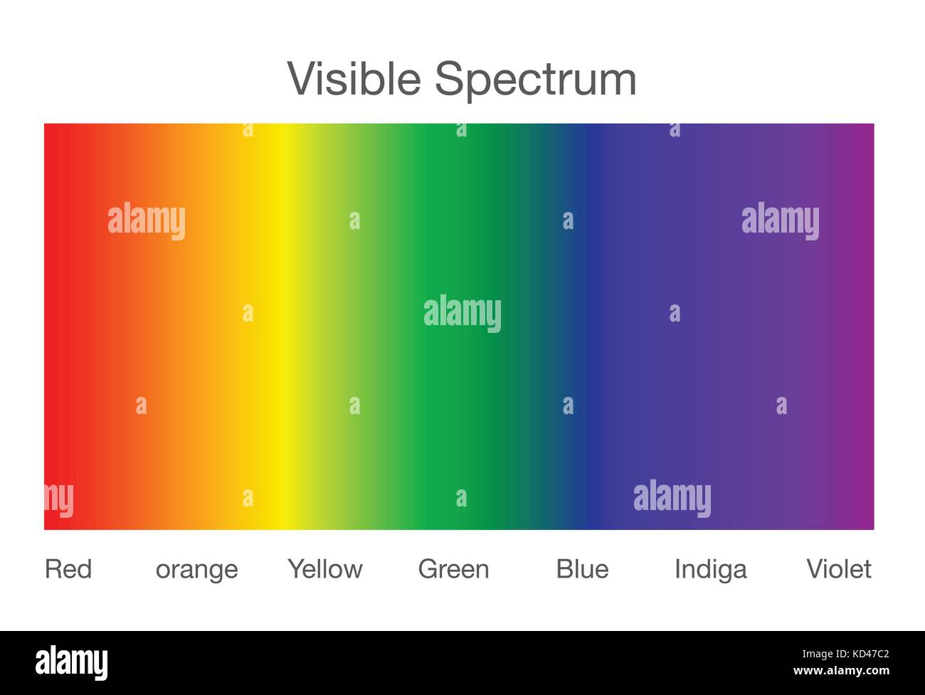 Visible spectrum of light. - Stock Vector