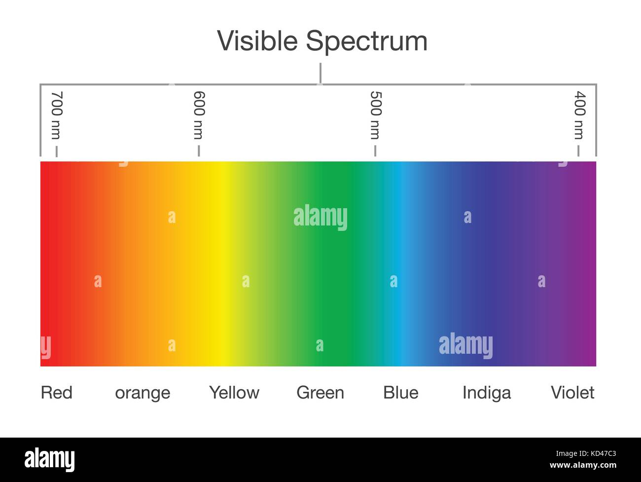 Chart of Visible spectrum color. - Stock Vector