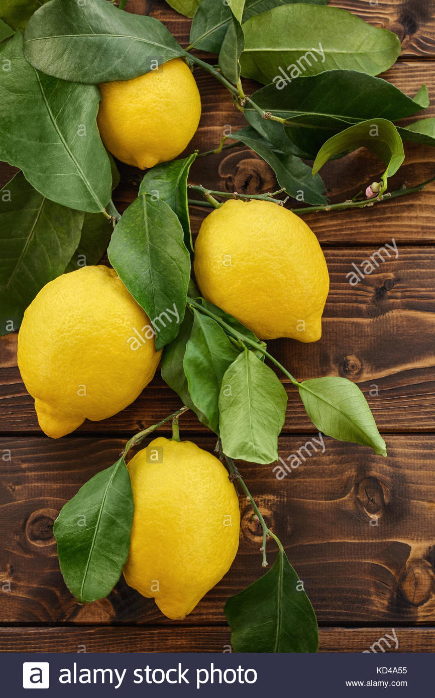 Fragrant Italian Sorrento lemons, available year-round, are an important ingredient in Italian cuisine and in the - Stock Image
