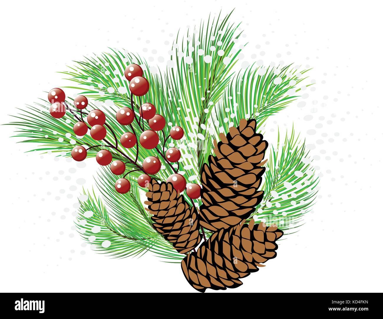 Pine Cones Stock Vector Images
