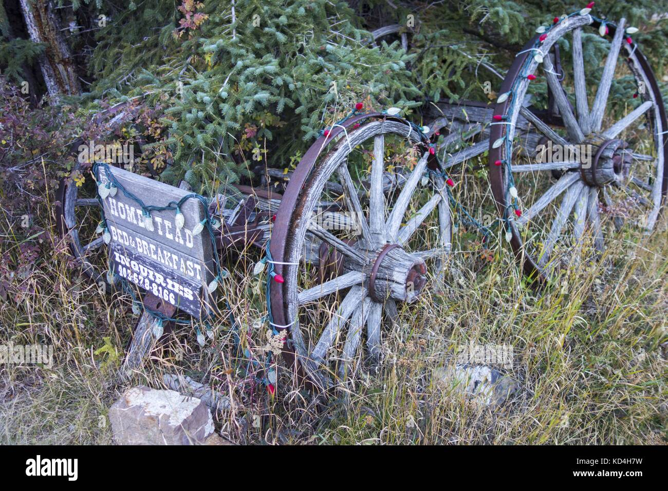 Bed and Breakfast Sign and old Western Wagon Wheel Stage Coach in Backyard of Homestead Land Holding in Town of - Stock Image