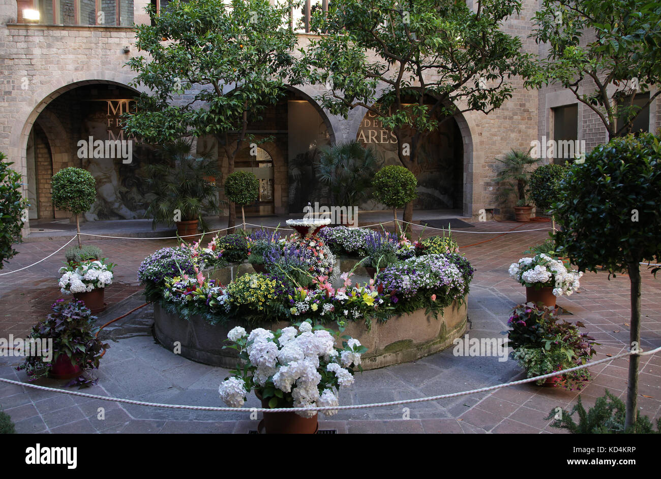 The Museu Frederic Marès located in the heart of Barcelona's Gothic Quarter Barcelona Catalunia Spain - Stock Image