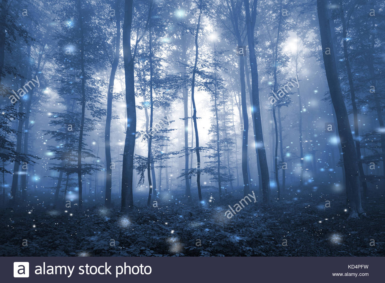 Artistic blue color foggy forest tree fairytale landscape with abstract fireflies. - Stock Image
