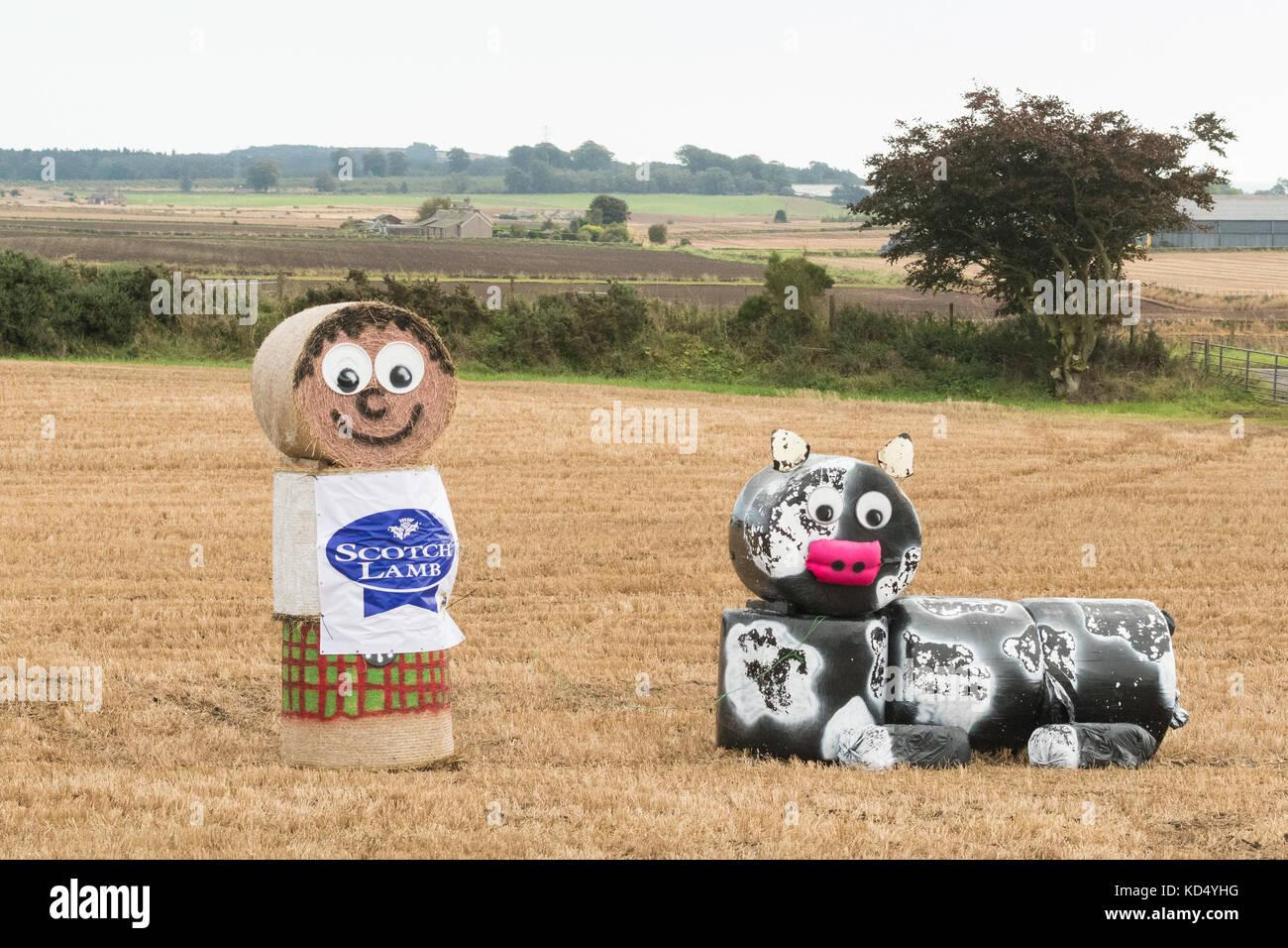 Young Farmers bale art promoting Scotch Lamb, Scotland, UK - Stock Image