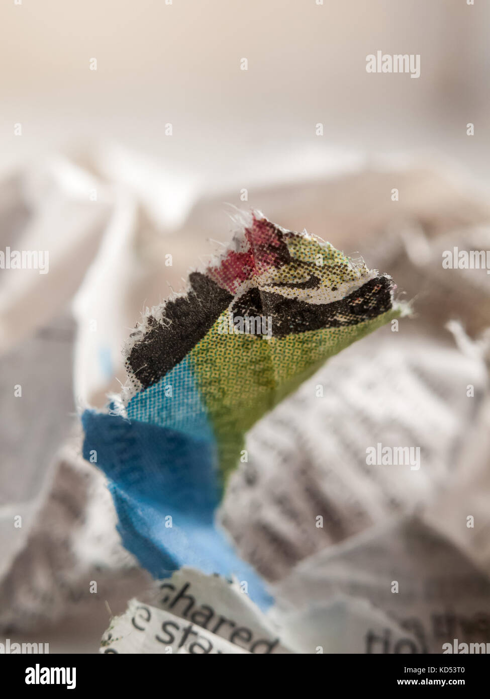 close up of crumpled up newspaper studio macro; essex; england; uk - Stock Image