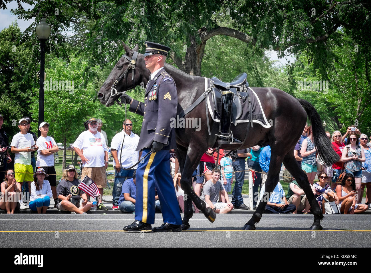 Washington Dc May 25 2015 Memorial Day Parade Led By A Riderless Stock Photo Alamy