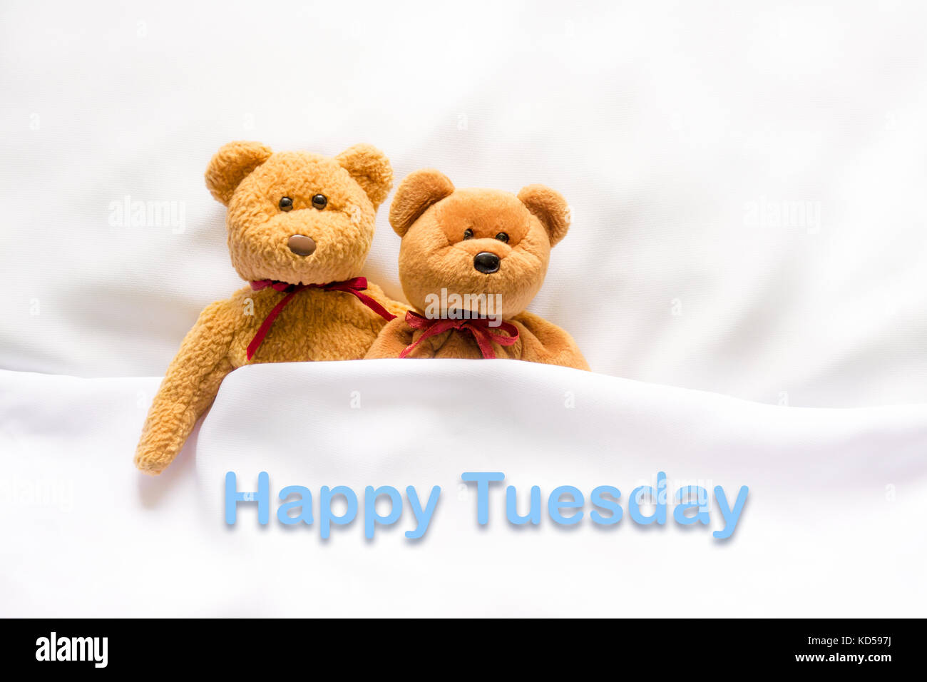 Teddy Bear Lying In The White Bed With Message Happy Thursday