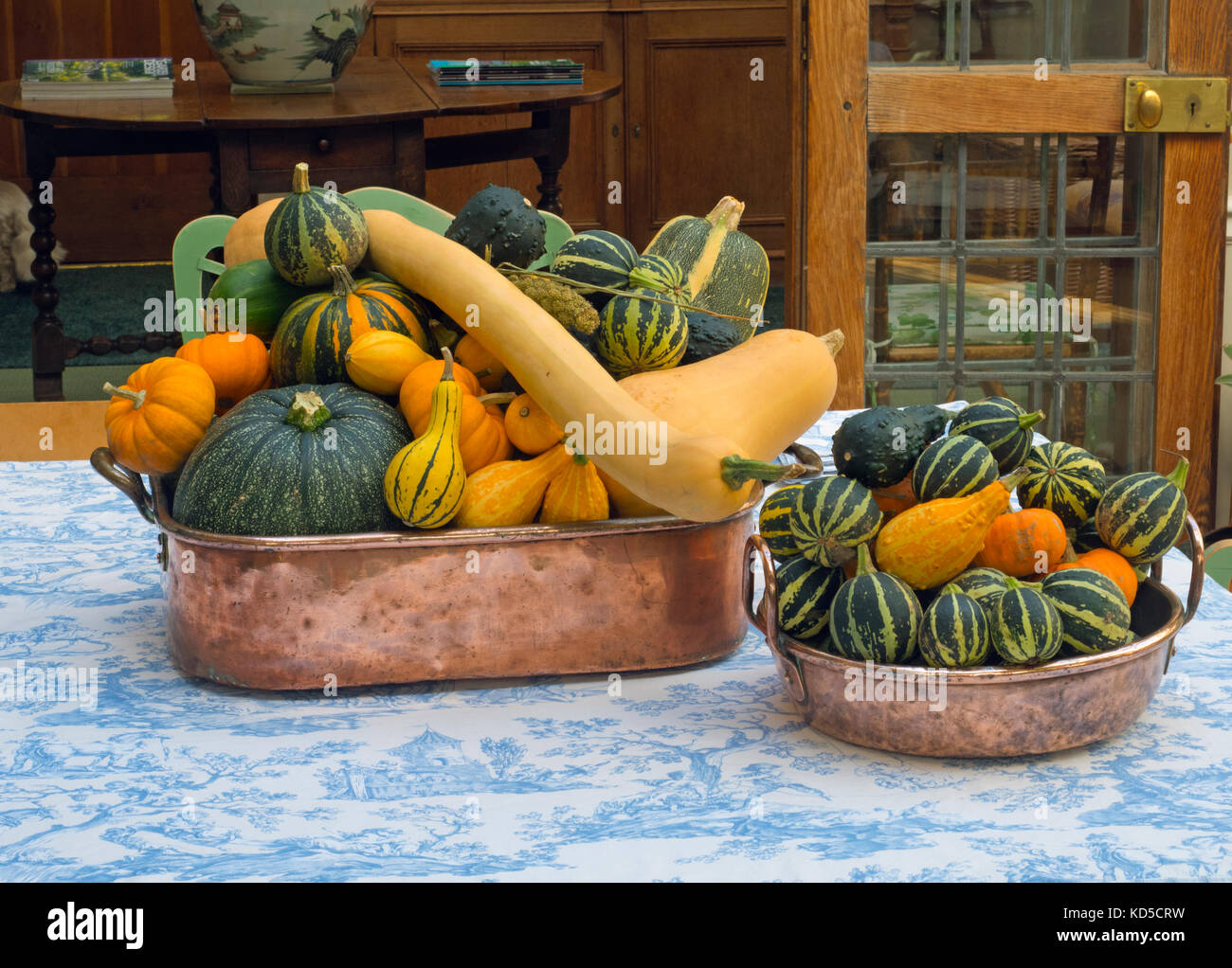 Mixed squashes on display autumn fruits from the garden - Stock Image