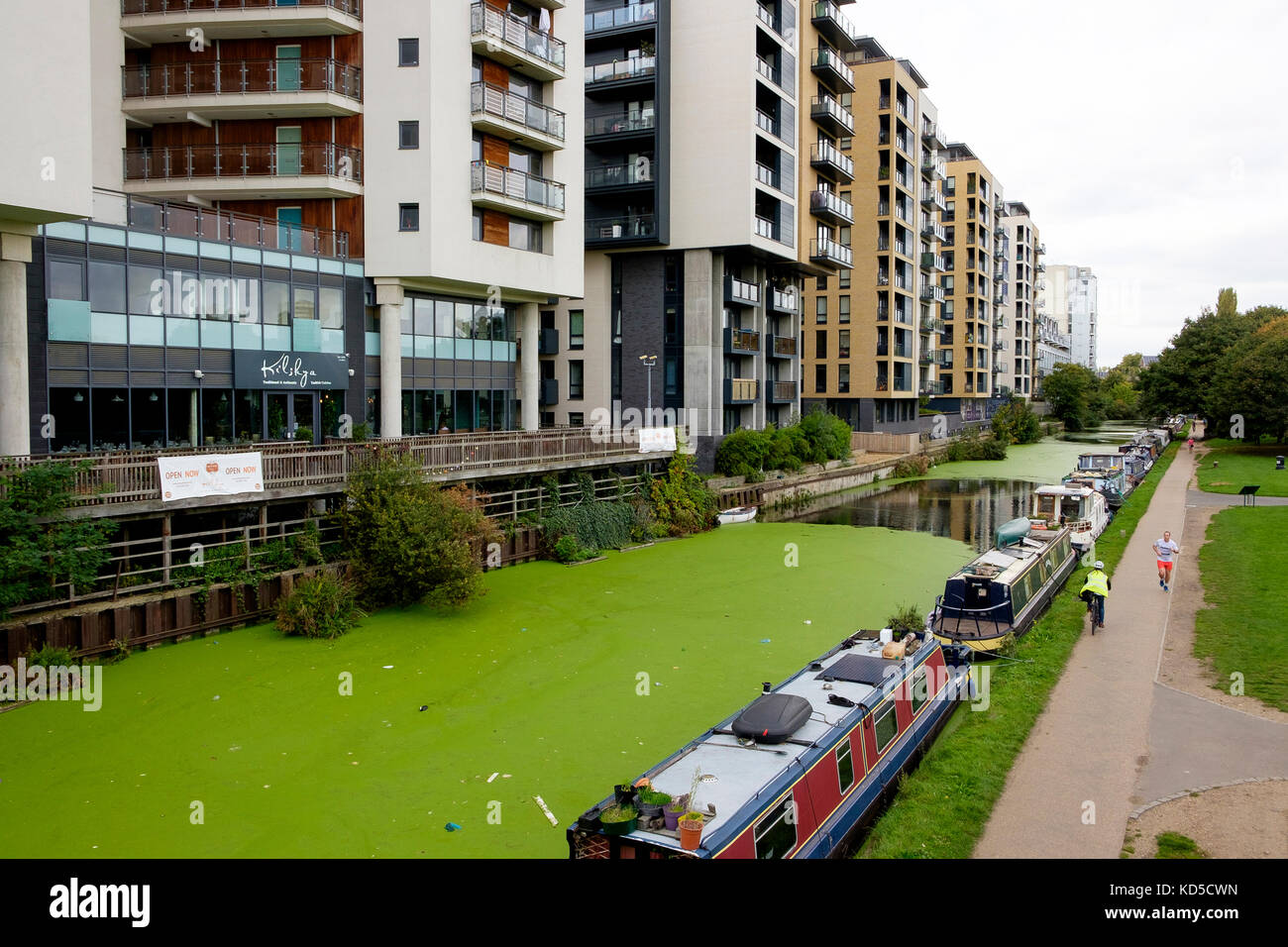 Flats and apartment buildings of Globe Town, Tower Hamlets overlooking the Regents Canal, East London - Stock Image