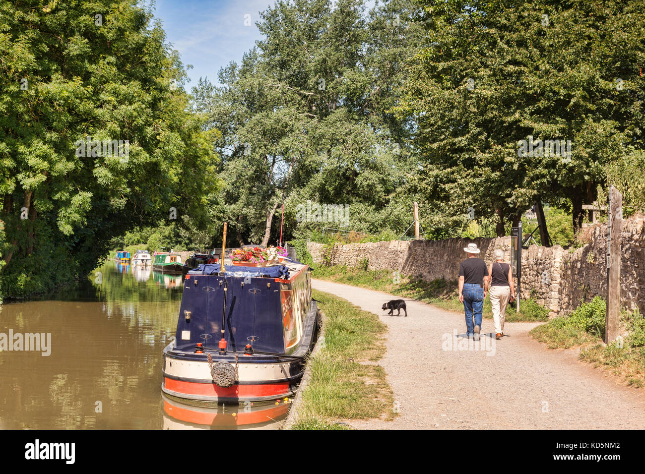 7 July 2017: Bradford on Avon, Somerset, England, UK - Couple with dog walking on the tow path beside a row of narrowboats - Stock Image