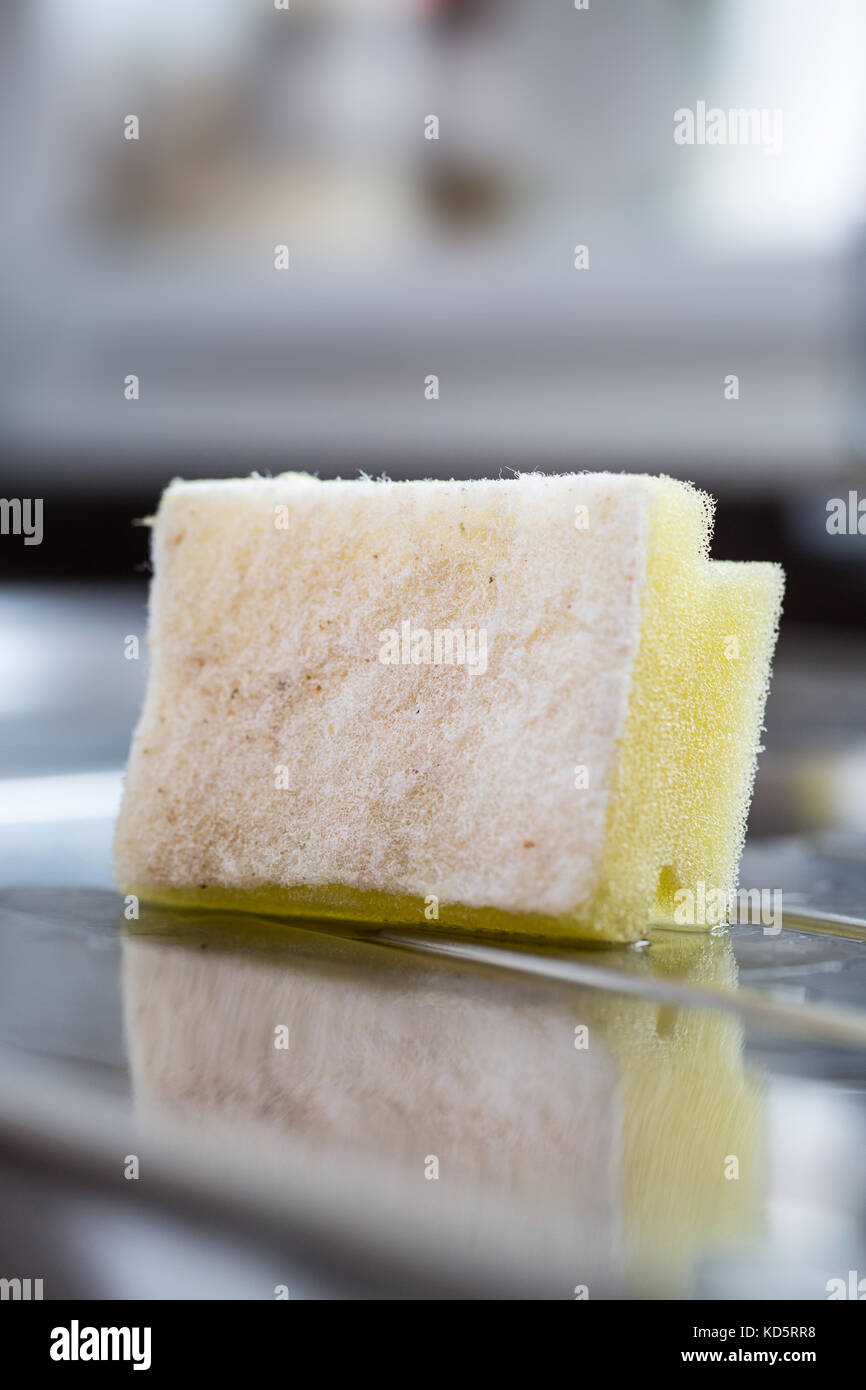 A used washing up sponge on a kitchen draining board - Stock Image