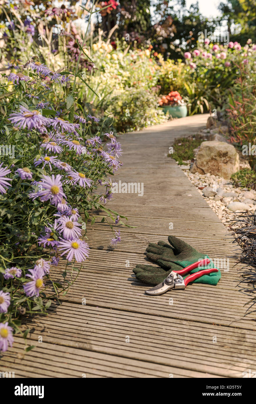 Secateurs and garden gloves on decking. Stock Photo