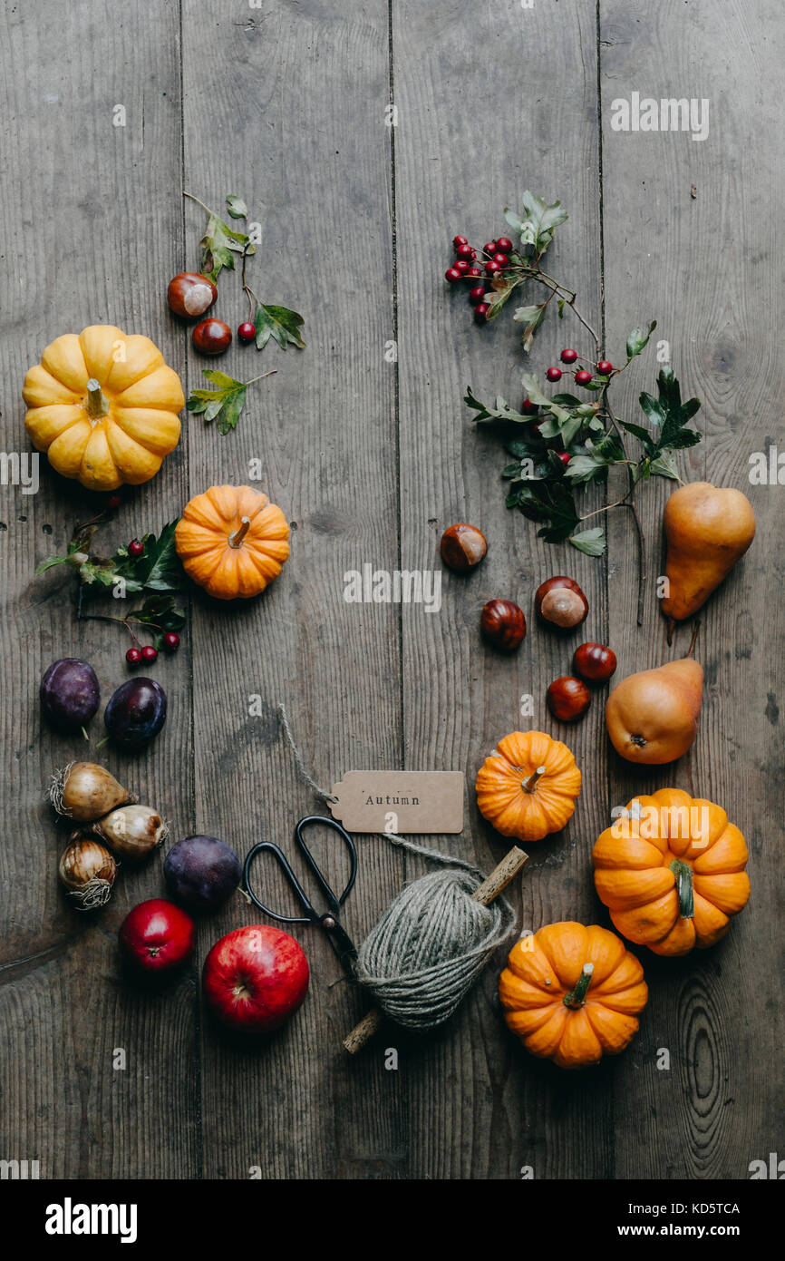 Autumn Display with munchkin pumpkin and other Fall fruits and berries and leaves - Stock Image