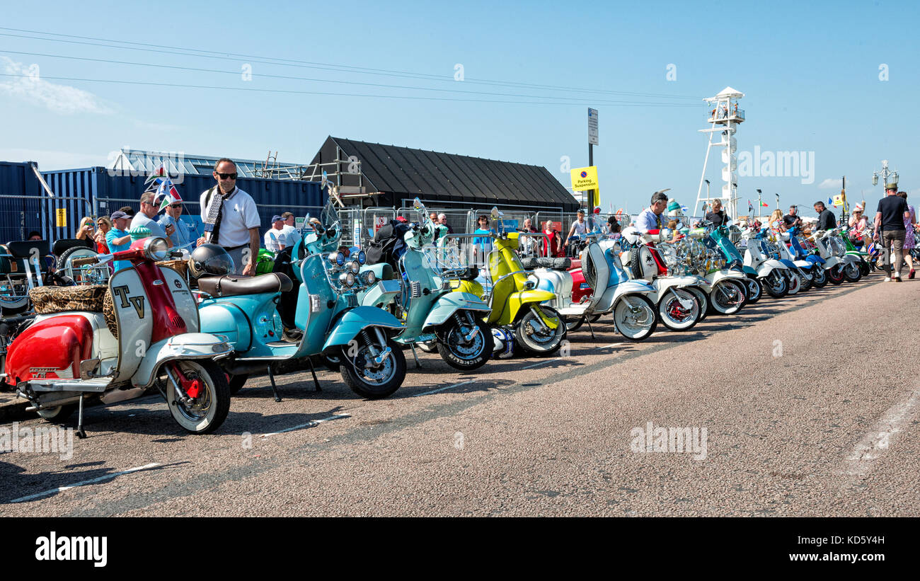Brighton Mod Rally, August Bank Holiday Scooters lined up on show - Stock Image