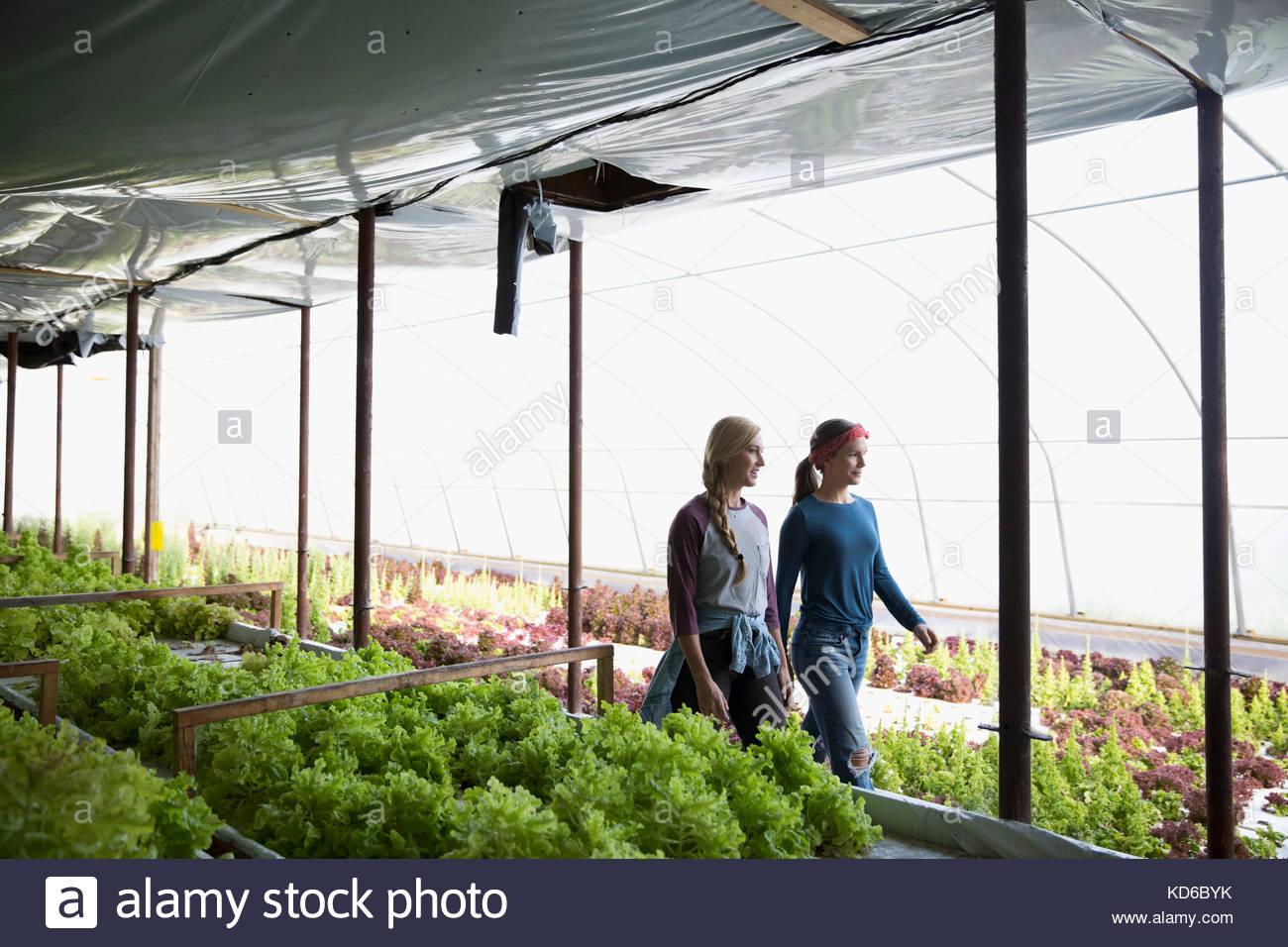 Female farmers walking in greenhouse - Stock Image