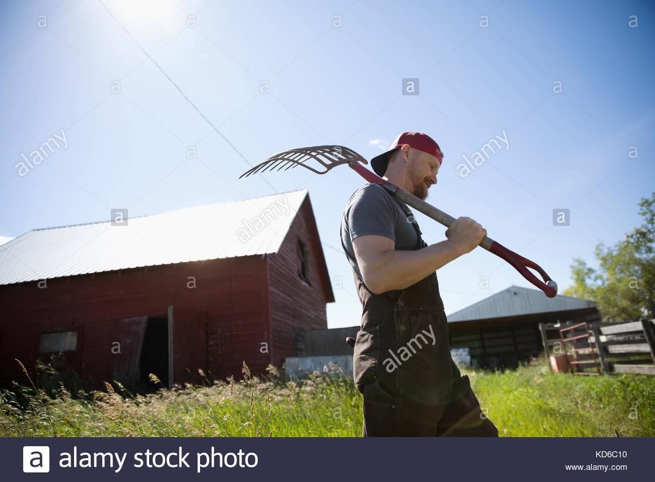 Male farmer carrying rake, walking on sunny farm outside barn - Stock Image