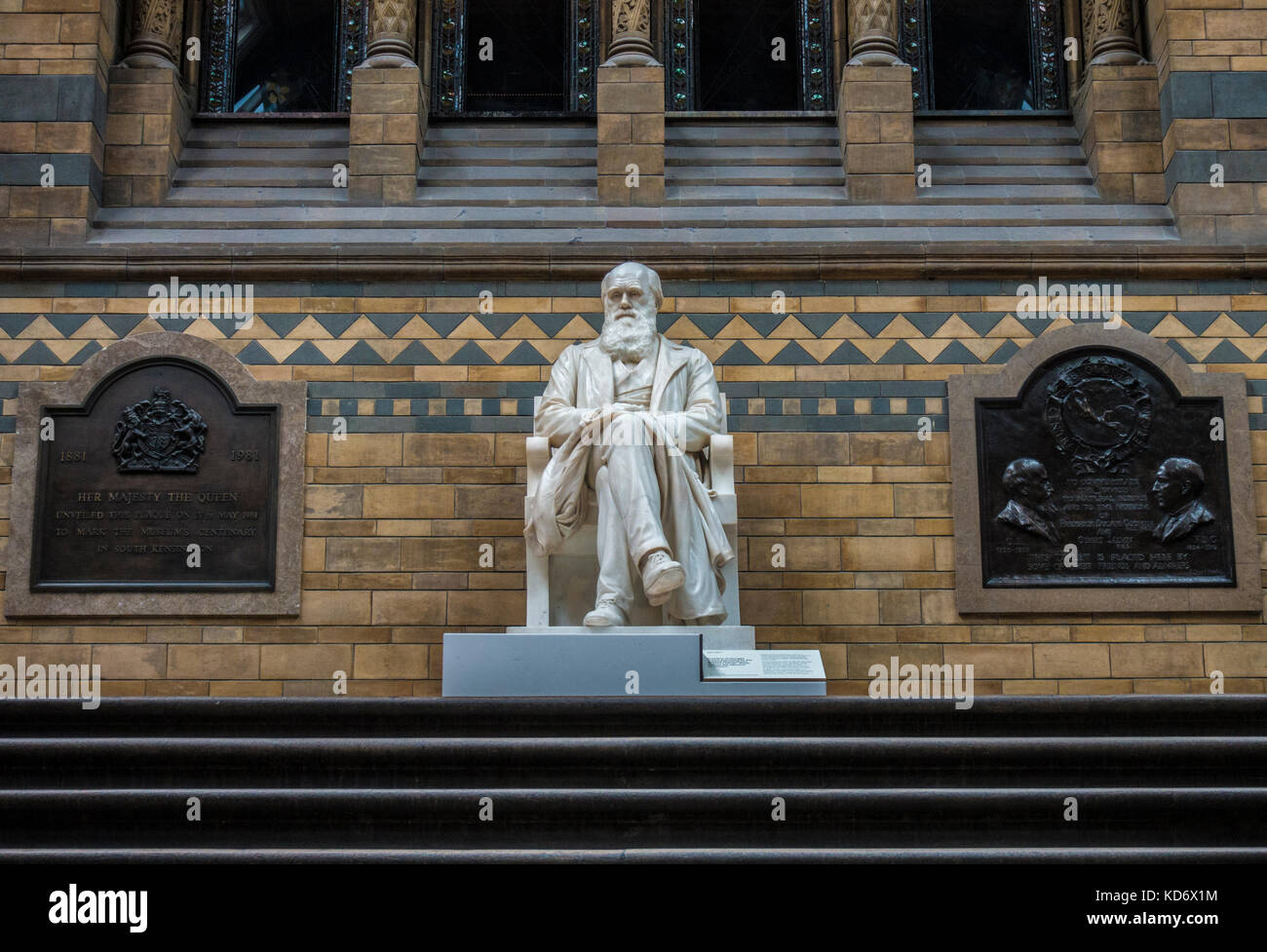 Historic Charles Darwin, Victorian era (1885), marble statue, on the landing in the main hall of the Natural History - Stock Image