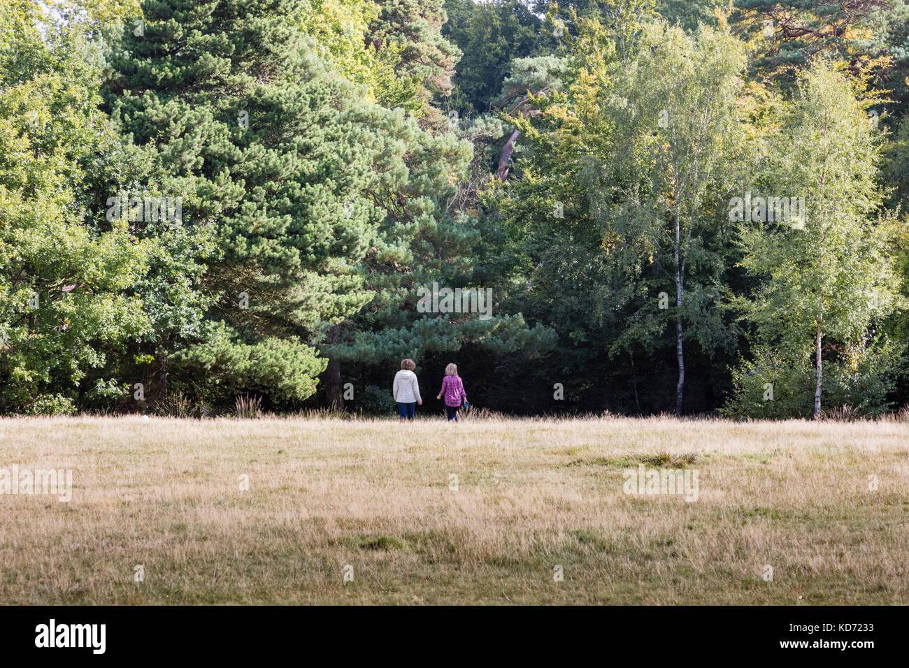 Two women dog walkers walk their dogs across Keston Common, Bromley, London, UK - Stock Image