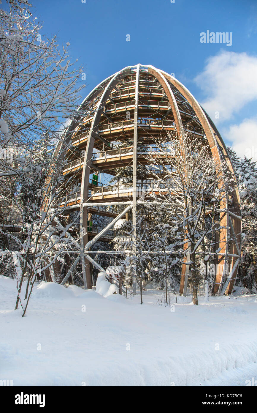 Baumwipfelpfad in winter, wooden tower construction of the world´s longest tree top walk in the Bavarian Forest - Stock Image