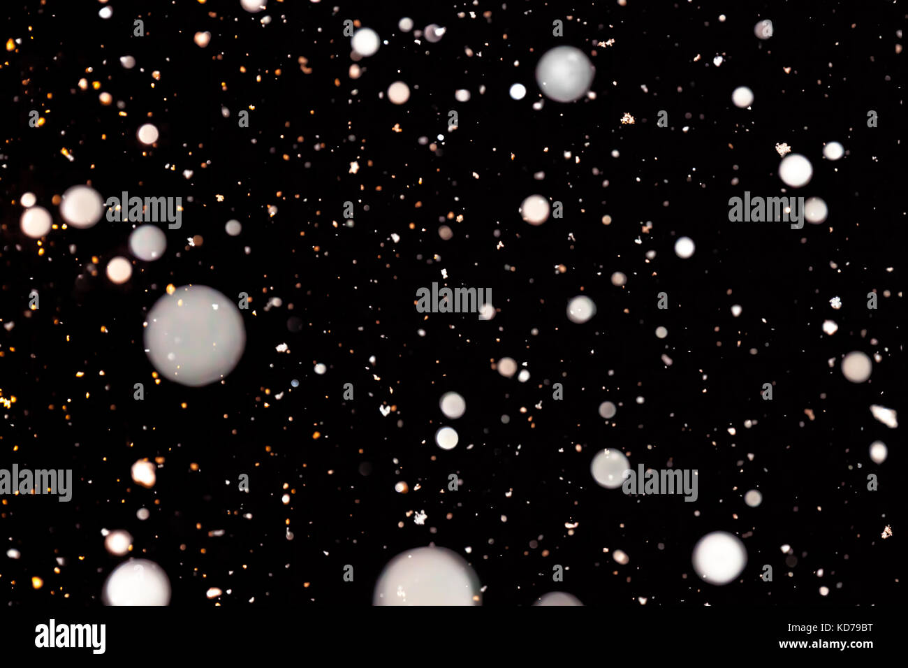 abstract background of falling snow. white snowflakes on a black background. design element - Stock Image
