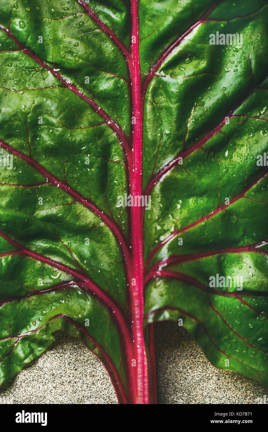 Flat-lay of fresh green leaves of swiss chard. Vegetarian food - Stock Image
