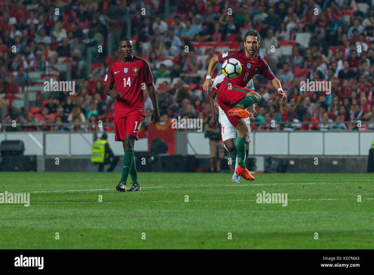 61b7a3f5255 Moutinho Stock Photos & Moutinho Stock Images - Alamy