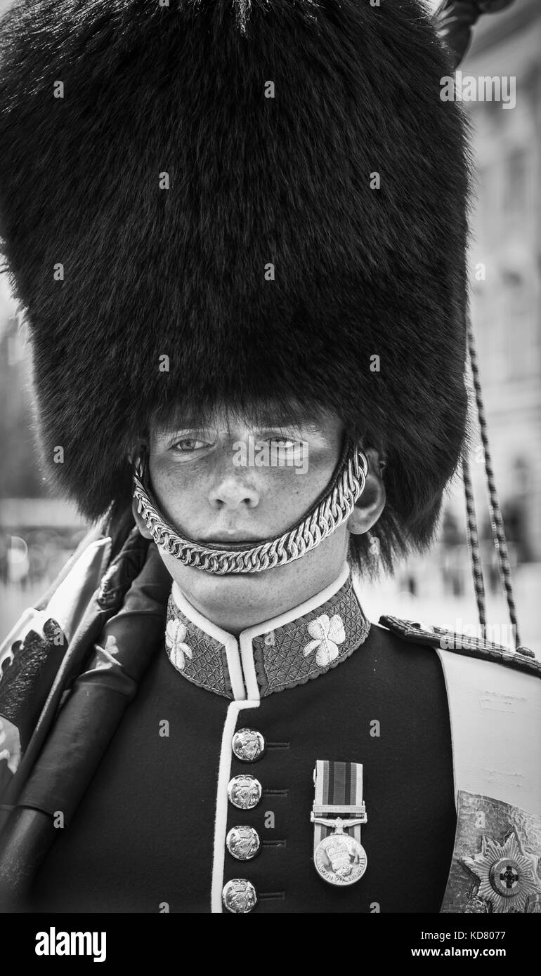 Head shot of a soldier, a guardsman member of the Queen's Guard at Buckingham Palace, London, on sentry duty - Stock Image