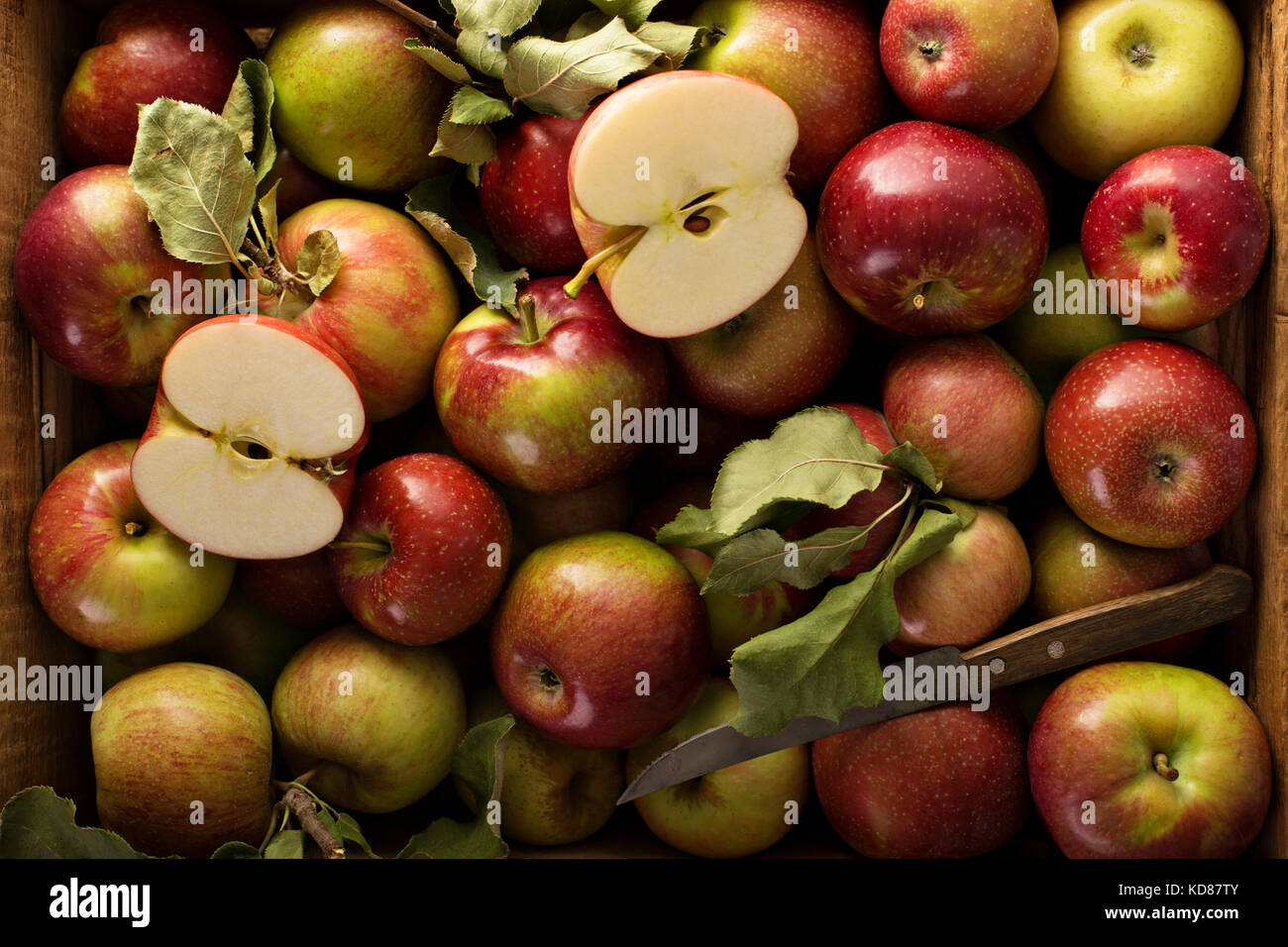 Freshly picked apples in a wooden crate - Stock Image