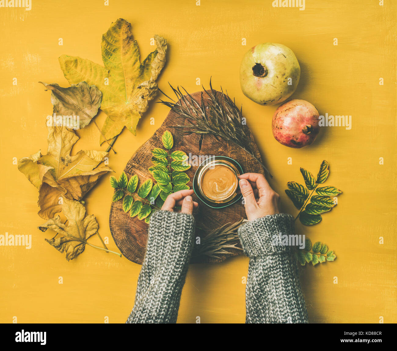 Autumn morning coffee concept. Flat-lay of woman' s hands in grey woolen sweater holding cup of espresso over - Stock Image