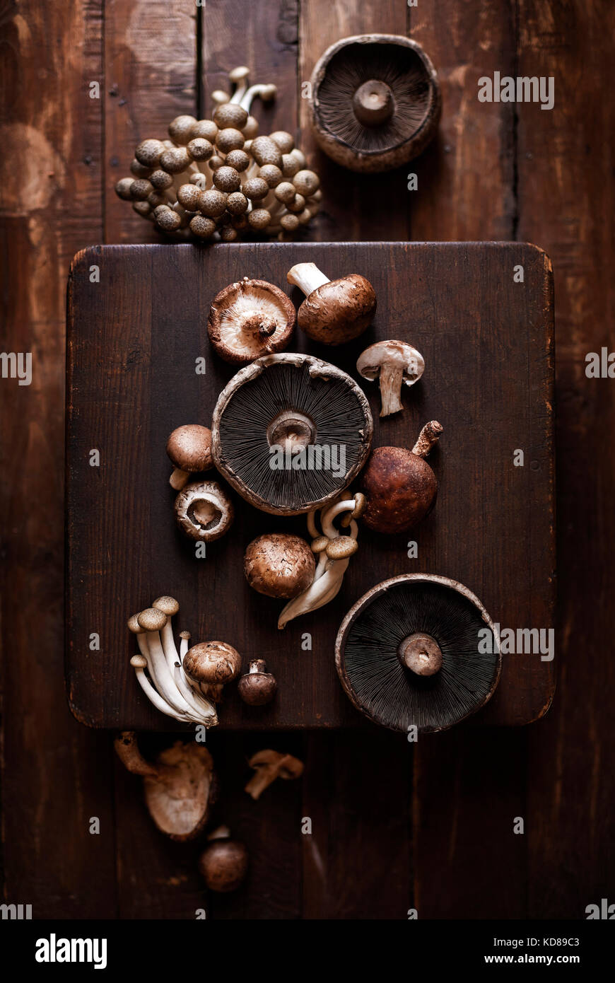Variety of mushrooms spread out vertically across warm wood butcher blocks. - Stock Image
