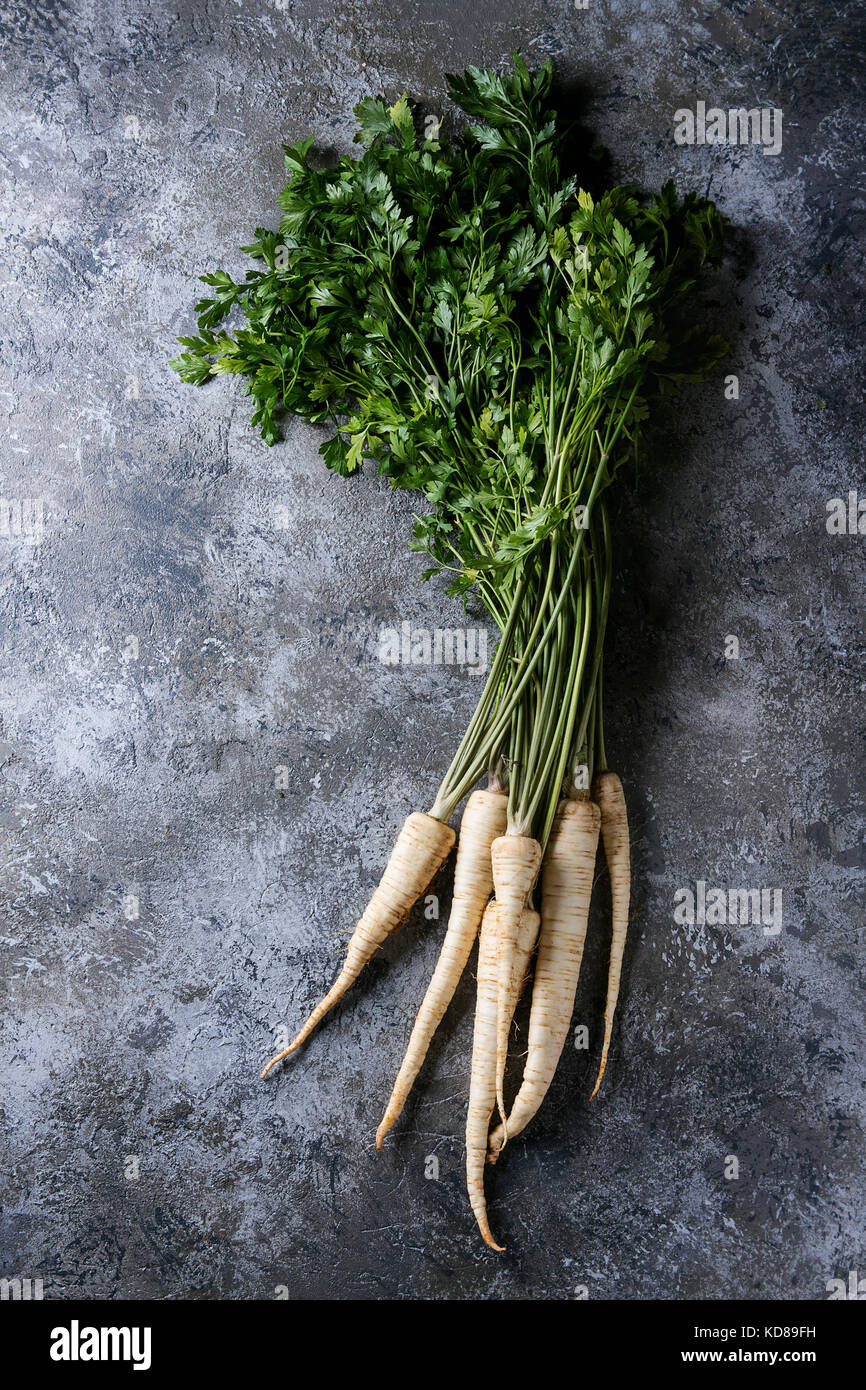 Bundle of fresh organic parsnip with haulm over gray texture background. Top view with space - Stock Image