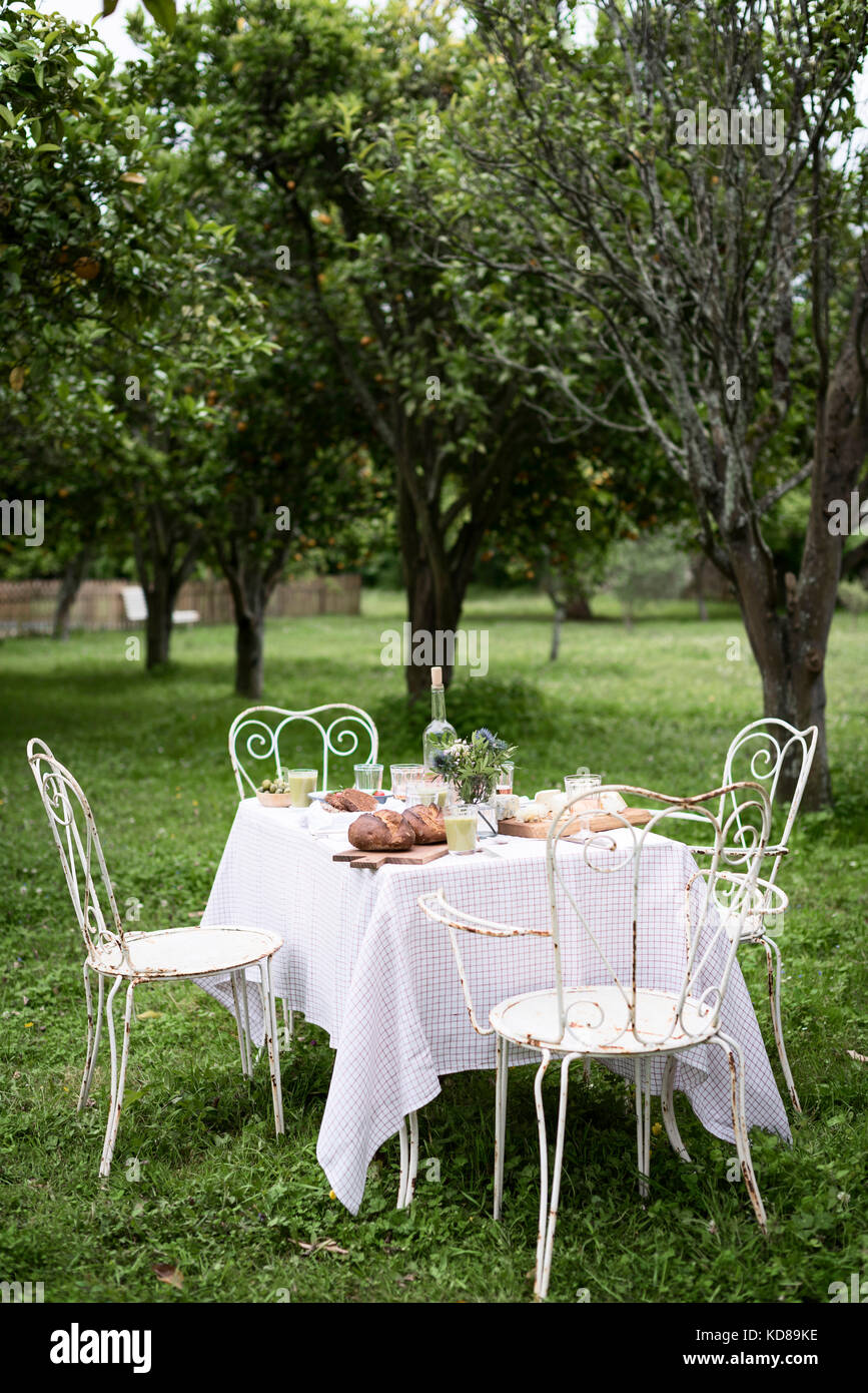 Alfresco lunch on rustic iron chairs in an orchard - Stock Image