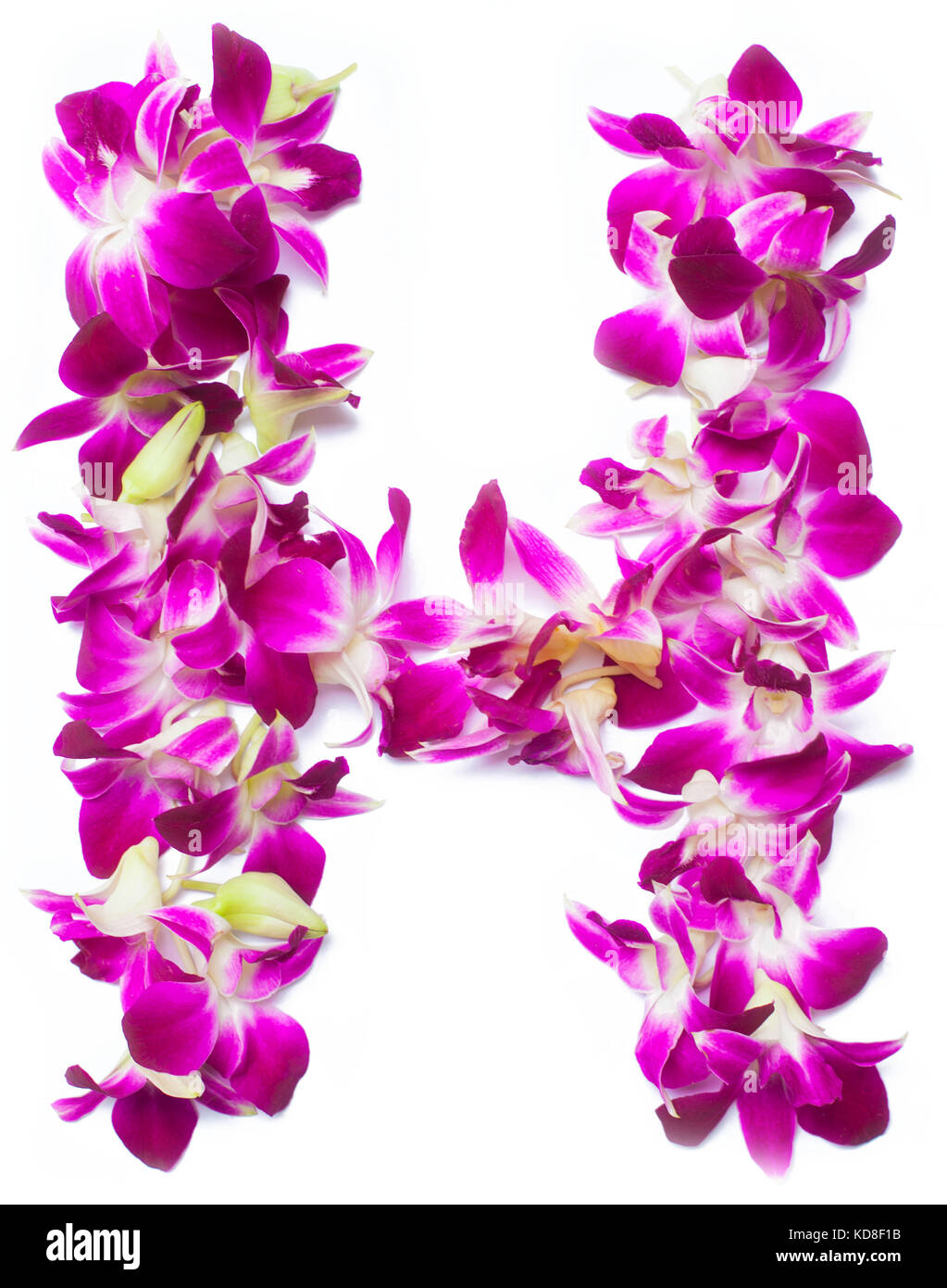 H Letter Images.Letter H From Orchid Flowers Isolated On White Stock Photo