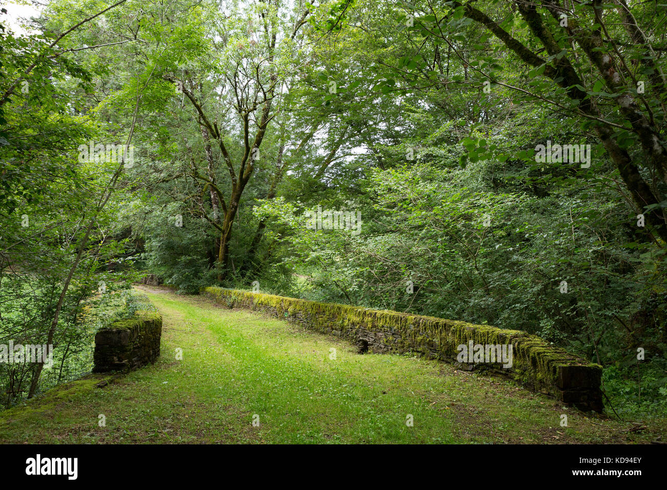 JUMILHAC-LE-GRAND, FRANCE - JULY 1, 2017: Old 2000 year old roman bridge in a green forest. - Stock Image