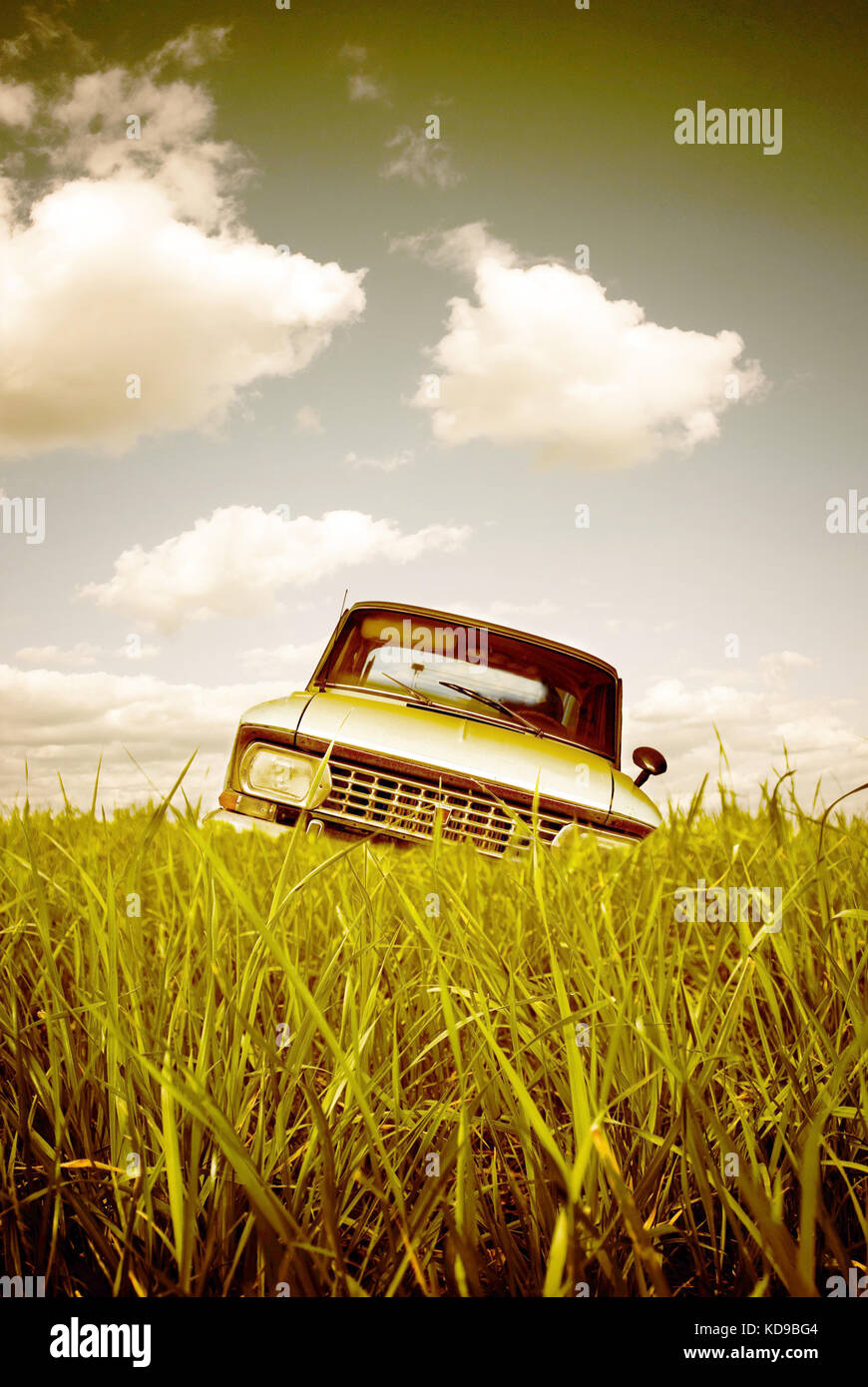 old car abandoned in a meadow - Stock Image