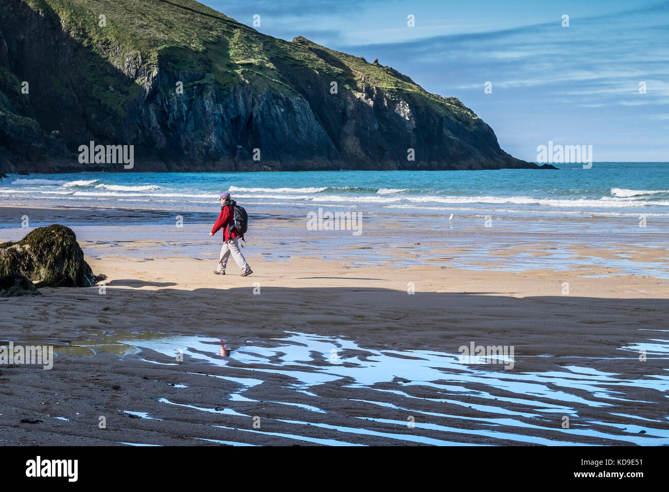 Holywell Bay - a walker on the beach at low tide at Holywell Bay Cornwall. - Stock Image