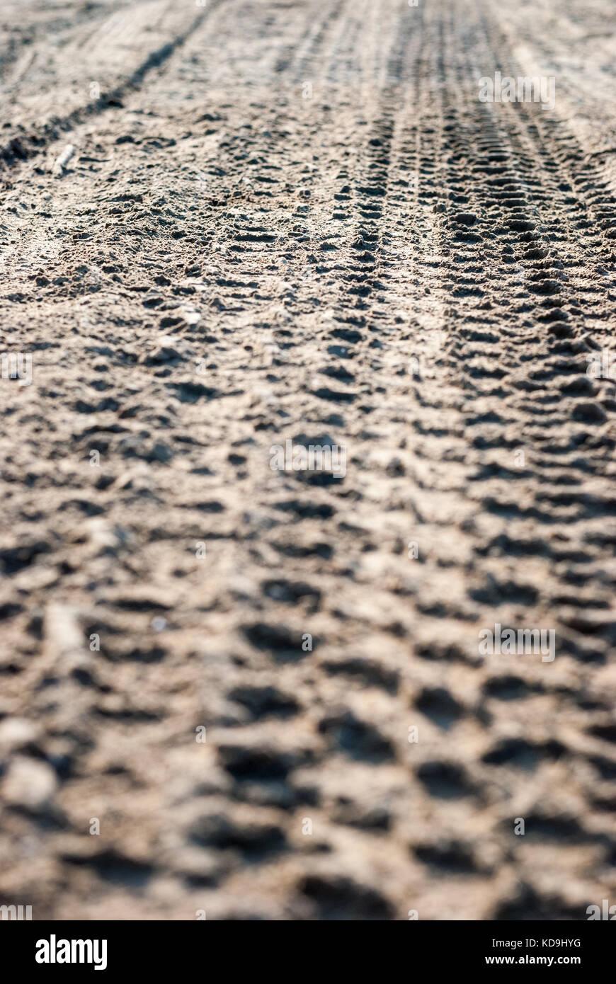 Truck tyre tracks on sandy salt lake - Stock Image