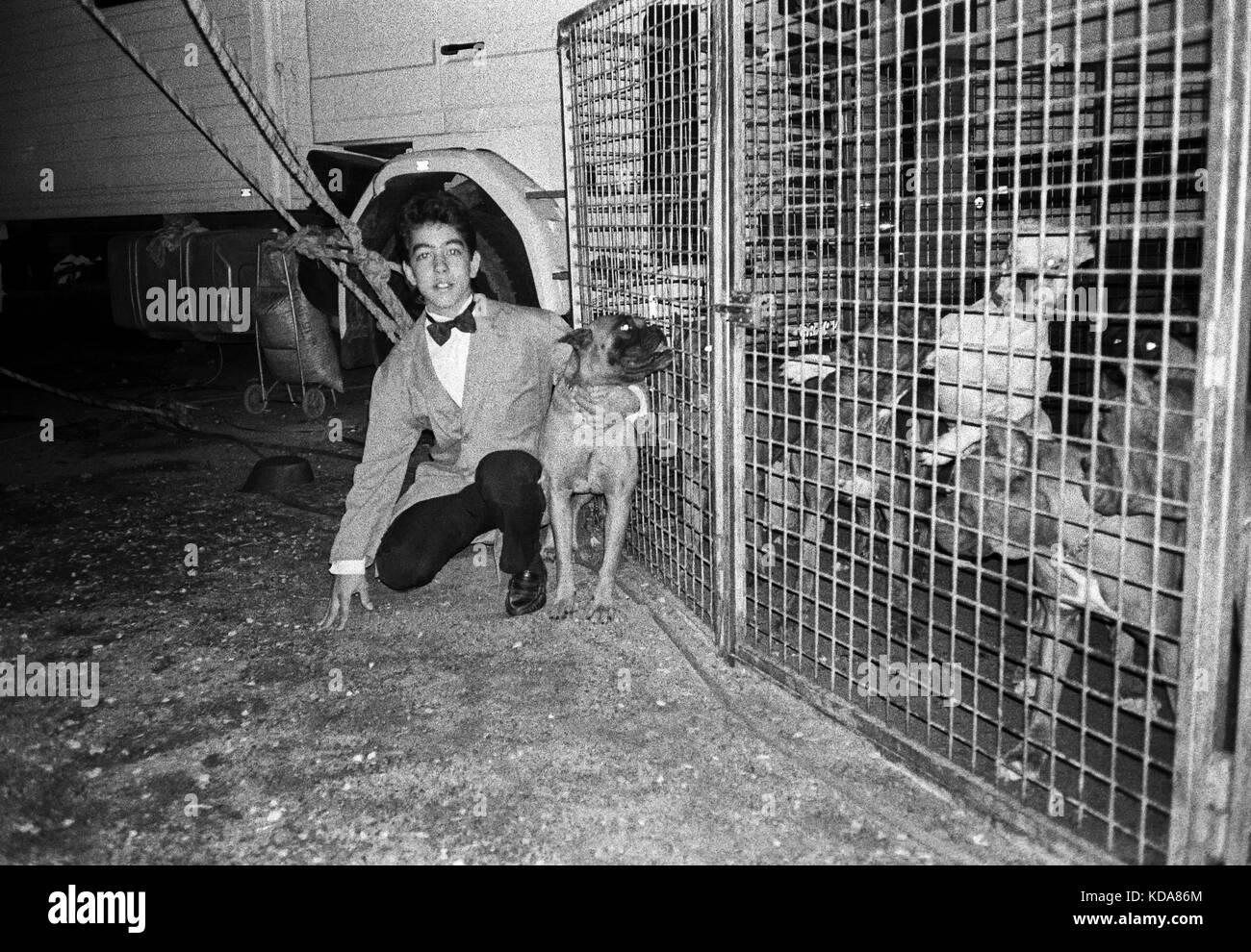 Circus dogs and boy. Lisbon, 1990-1992, Portugal - Stock Image