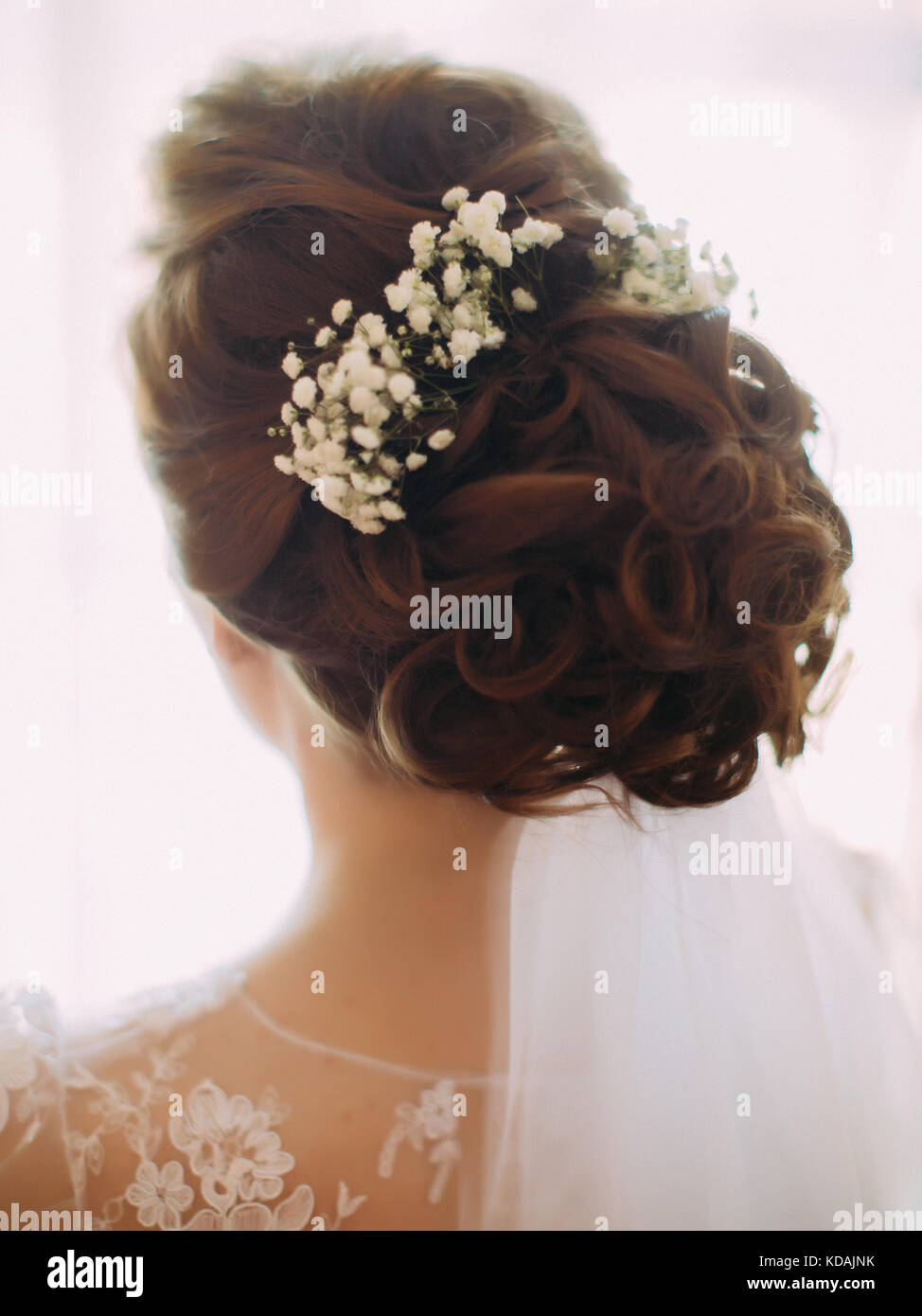 Hairstyle Head Bride Back Stock Photos Hairstyle Head Bride Back