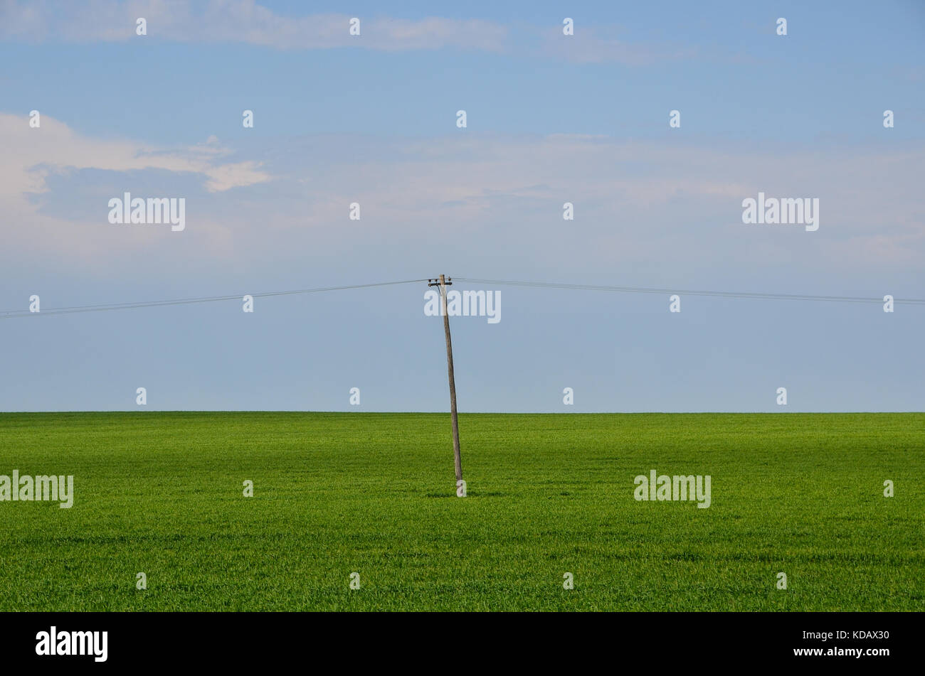 Minimalist landscape of one power pole in middle of green field with blue sky. Stock Photo