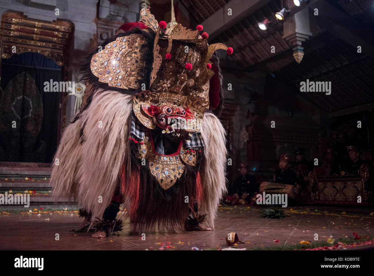Traditional Balinese Legong dancer performing in a theater in Ubud, Bali, Indonesia. - Stock Image