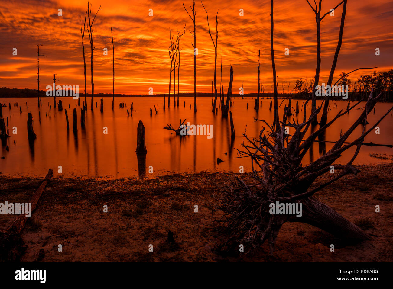 Incredible sunrise paints the water and a sky in beautiful golden color Stock Photo