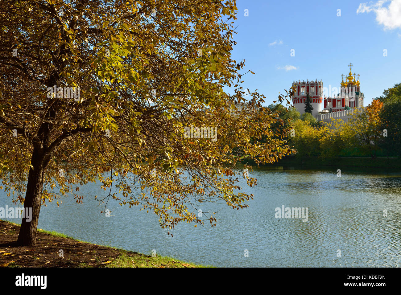 Golden Autumn in park of Novodevichy Convent. Moscow, Russia - Stock Image