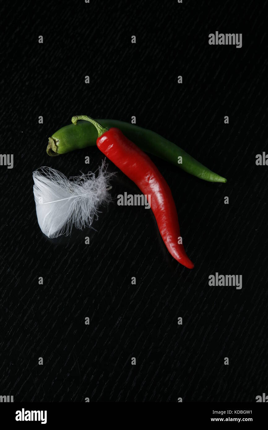 zwei chillies mit Gänsefeder - two chillies with goose feather - Stock Image
