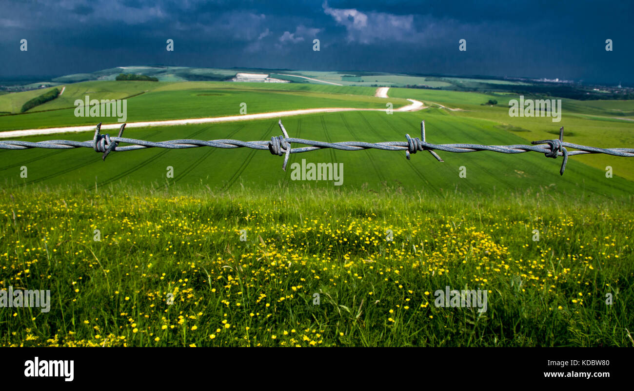 Barbed wire fence on Sussex Downs near Lancing, West Sussex, UK. - Stock Image