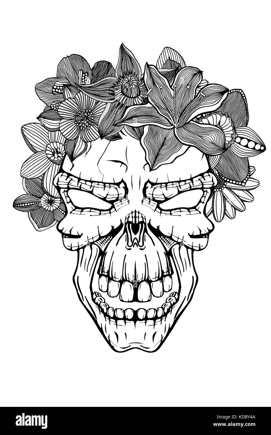 Skull With The Succulent Plants And Flowers Vector Illustration Stock Vector Image Art Alamy