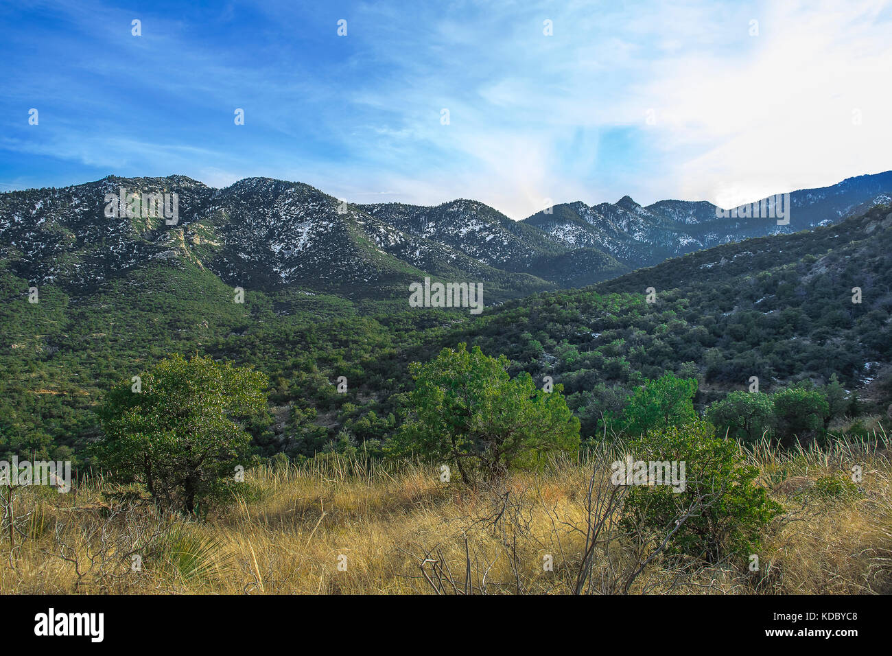 East Face of Mount Graham off Swift Trail Junction near Safford, Arizona. Stock Photo