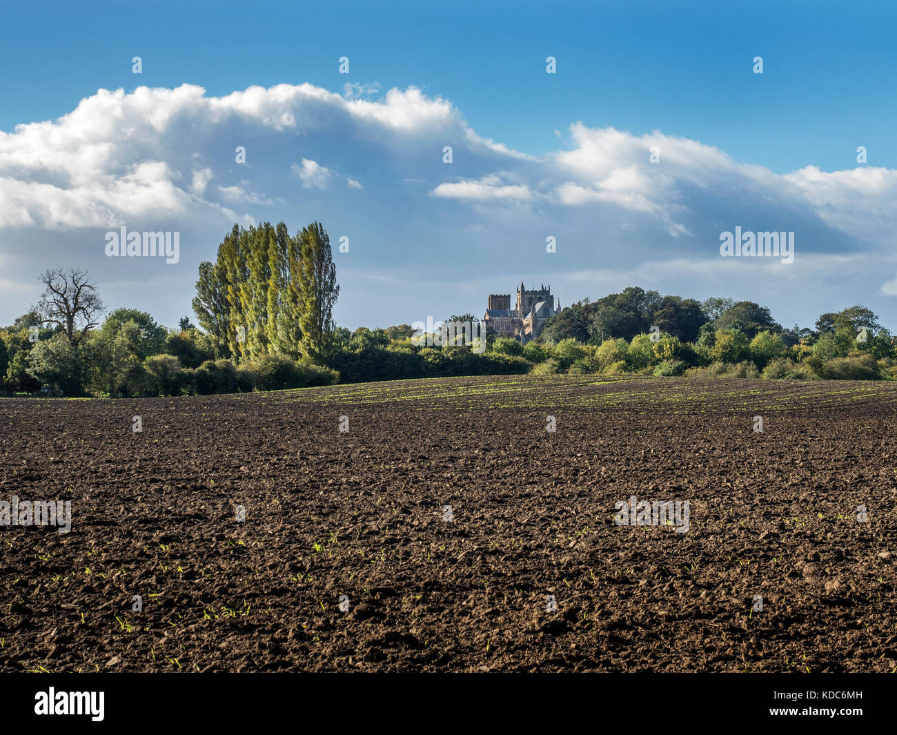 Ripon Cathedral from Fisher Green on the Ripon Rowel Walk Ripon Yorkshire England - Stock Image