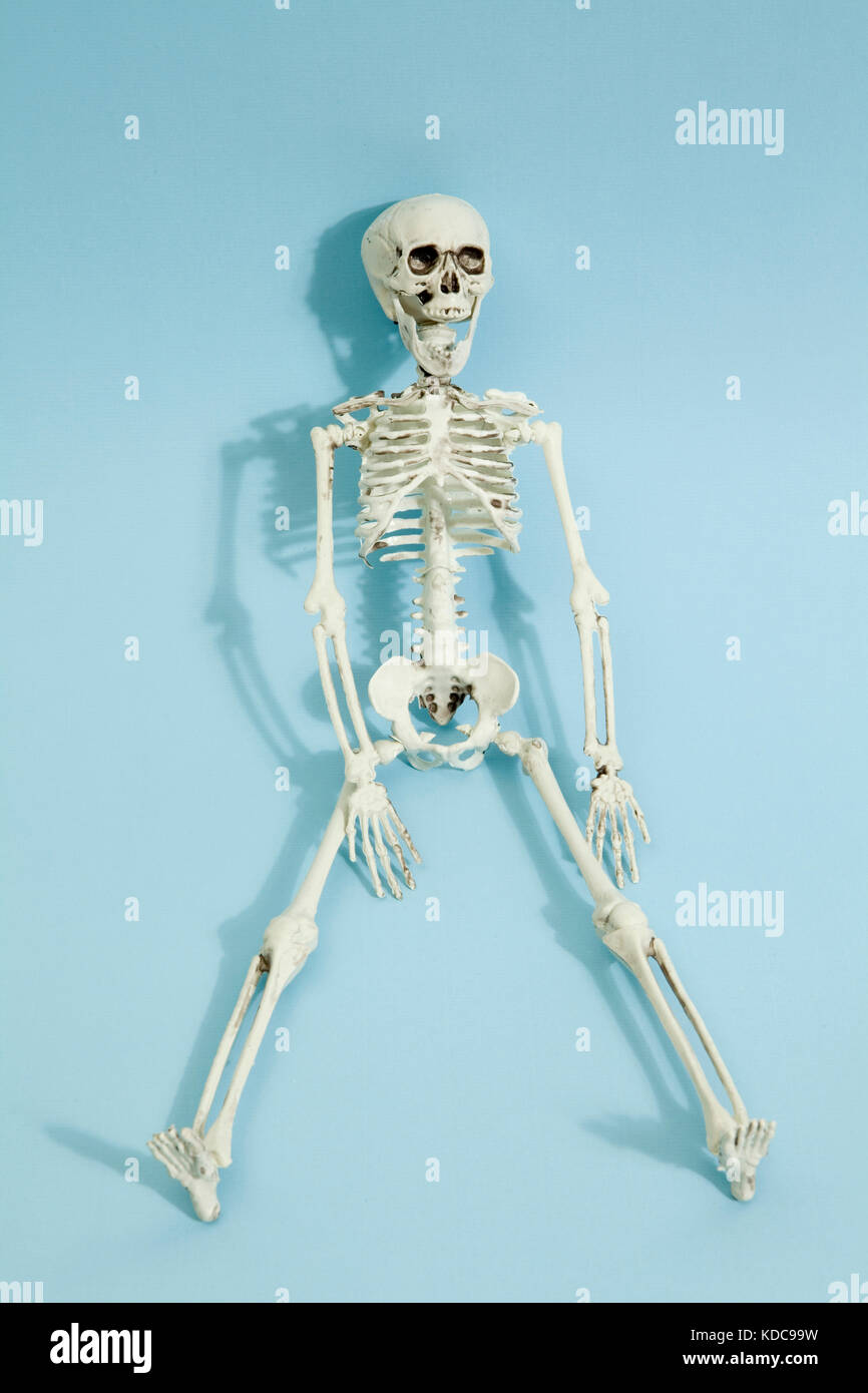Isolated plastic toy skeleton on a vibrant pop blue turquoise background. Minimal color still life photography - Stock Image