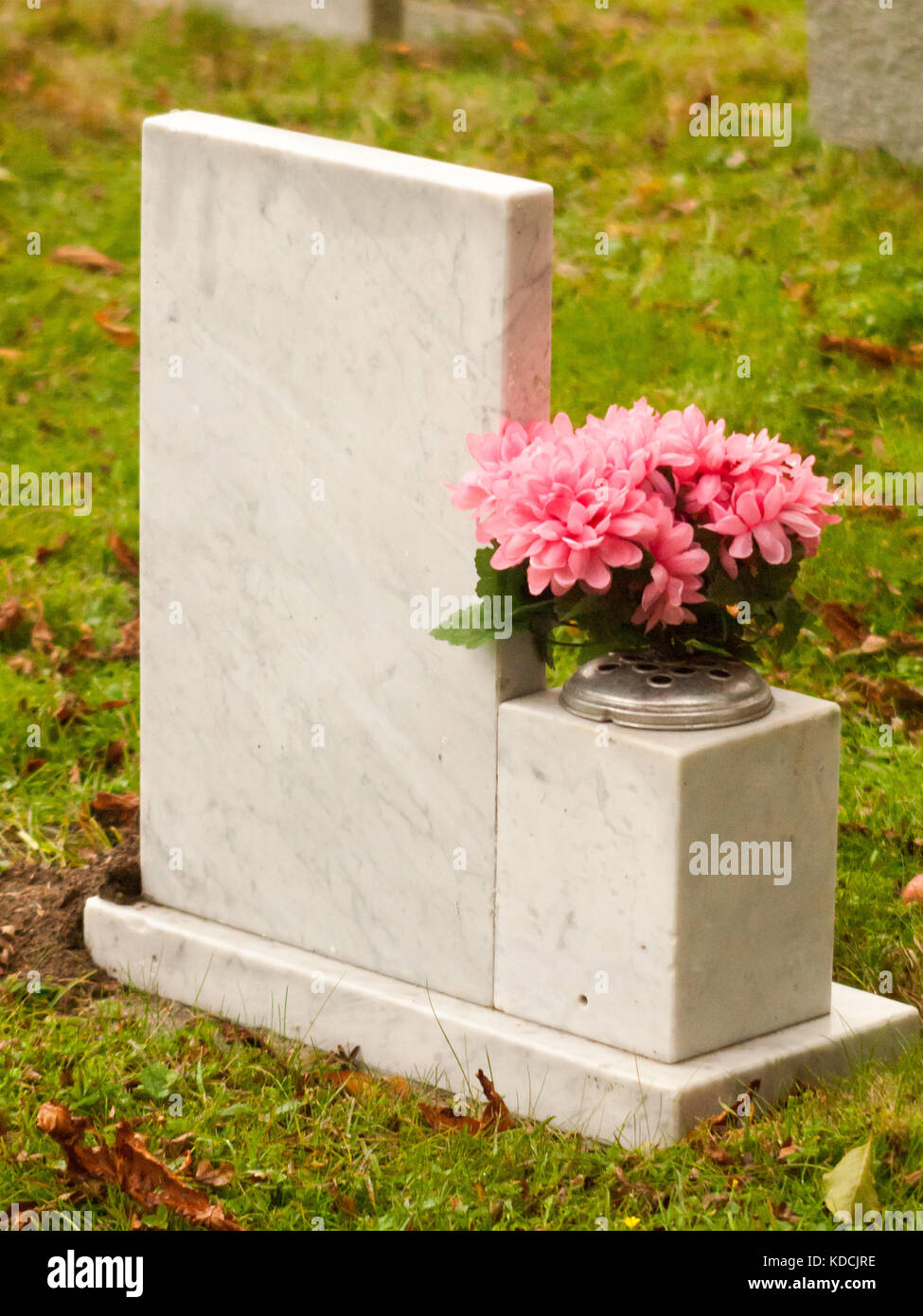 white marble gravestone from behind with pink flowers cemetery; essex; england; uky - Stock Image